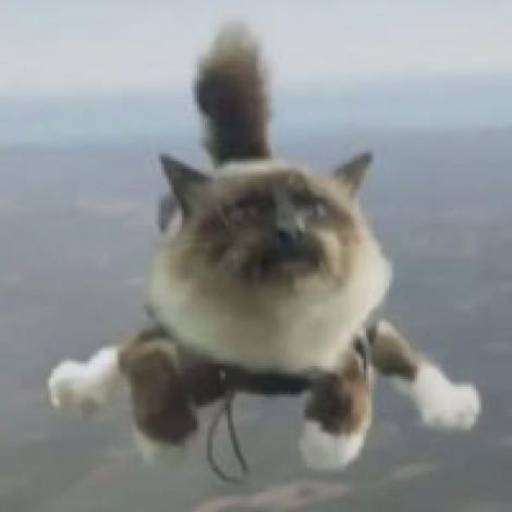 Прыжки с парашютом в Казани