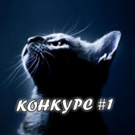 Конкурс №1 на блоге Kazanecc.ru